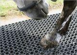 Función de guardar la estera mojada del caucho de la hierba