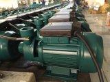 Электрическая водяная помпа Pm45/50/60 для пользы воды Celan отечественной