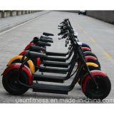 Bicicletta elettrica di Harley della montagna del motorino dei Cochi elettrici elettrici della città per l'adulto