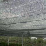 De zwarte HDPE van de Kleur Netto Schaduw van de Zon/Schaduw