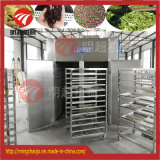 Maquinaria de sequía de la fruta vegetal del secador del aire caliente del acero inoxidable
