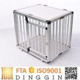 Incroyable chien en aluminium pour la vente de la caisse
