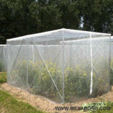 HDPE het Anti Opleveren van het Insect voor Serre