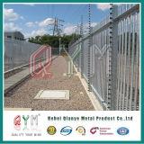 電流を通された庭の柵のヨーロッパに囲うことを囲う鋼鉄柵を囲うこと