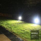 Lumière décorative de détecteur de qualité de jardin solaire imperméable à l'eau de pelouse