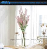 Einfaches Gerad-Mit Seiten versehenes Tisch-Pflanzenvasen-Dekoration-Glas-Glas