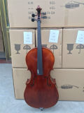 Haut de l'épinette sélectionnée avance violoncelle ancien professionnel de la flamme