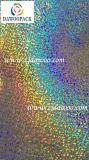 Holografische Film van het Hologram van het Huisdier van pvc van de Vervaardiging van China de Naadloze