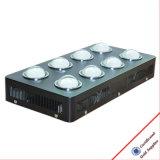 1008W lo spettro completo LED idroponico si sviluppa chiaro per dell'interno