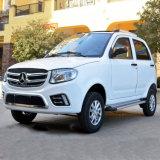 Nieuwe Energie Elektrische Vierwielige SUV