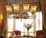 Lampe de plafond de beaucoup d'ampoules avec l'économie d'énergie