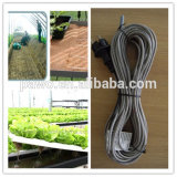 6m Plant Heating/Soil Cable avec du CE Certification