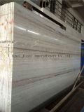 Lastra di marmo di legno di cristallo materiale di Buliding