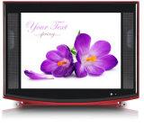 21 Zoll ultra dünner CRT-Fernsehapparat