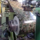 0,6 mm de espesor del material de construcción PPGI colorido de la bobina de acero galvanizado