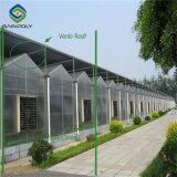 De Serre van het polycarbonaat voor Bloem die Groen Huis kweken