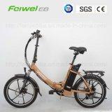 """20"""" 250 W vélo électrique pliant (TDN02Z-3)"""