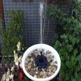 Alimentada a energia solar fonte de recursos para a bomba de água / Aves Exterior Pond