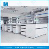 현대 학교 실험실 장비 자유로운 디자인 가구