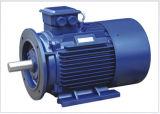 Motor elétrico trifásico da eficiência de IE2 Hight