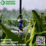 L'eau arrosant le matériel de système central d'irrigation de pivot