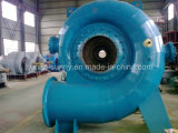 Turbine-Generator horizontale High Voltage 13.5kv/Hydrower/Hydroturbine de Hydro (Water)