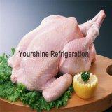 Conservación en cámara frigorífica del congelador modular para el pollo desde 1993