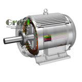 低い開始のトルク30kwの永久マグネット発電機