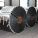 316/316L galvanisierte Stahlblech/Ring mit Qualität