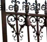 Cerca labrada de la puerta del hierro/cerca del jardín