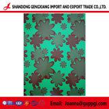 Farbe beschichtete vorgestrichenen galvanisierten Stahlring /PPGI