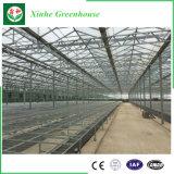 Sistema de Control automático de la casa verde de vidrio para la Agricultura