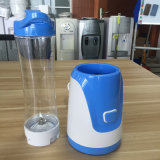 300W Mini Personal Fruit Juicer Blender 중국