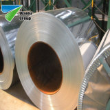 Fire new Galvanized Steel Coil Steel Products Galvanized Steel Coils