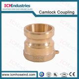 위조된 금관 악기 Camlock 접합기 또는 Camlock 연결