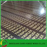 بناء درجة يطبع علامة تجاريّة [شوتّرينغ] خشب رقائقيّ