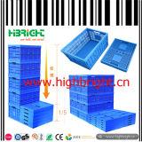 De grandes caisses en plastique de maintien de frais de transport pour les fruits et légumes dans ferme