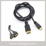Mâle à l'adaptateur coaxial mâle HDMI au mini câble de HDMI