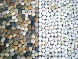 Tapis de salle de bain en pierre de cailloux mixte de haute qualité