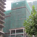 Impalcatura che sviluppa la rete di sicurezza verde della costruzione per l'esportazione