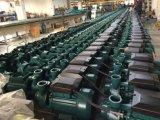 Pm45/50/60 Celan 물 가정용을%s 전기 수도 펌프