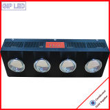 Veg / Flowering 504W COB LED Grow Lights pour les plantes médicales