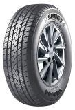 Neumáticos para coches de marca de sol