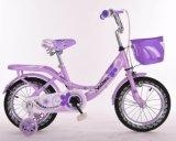 자전거 아이들 자전거가 제조자 BMX MTB 도시에 의하여 농담을 한다