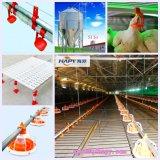Macchine dell'azienda avicola con il disegno stabilito completo e la strumentazione