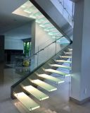Anunció la escalera de la viga con el pasamano de cristal y la pisada de madera