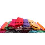 Neuestes Style Fashion Silk Scarf mit Tassels Spring Shawl