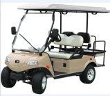 Elektrisches Golf-Gebrauchsfahrzeug (DEL3022G2Z, Gold, 2+2-Seater)