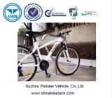 Cremalheira de bicicleta pública da boa qualidade