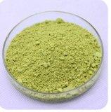 Actinidia- ChinensisFruchtsaft-chinesische Stachelbeere-Auszug-Kiwi-Puder Actinidin